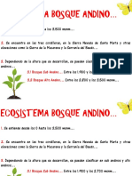 Ecosistema Bosque Andino.pdf