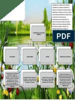 Edu.ambiental Converted