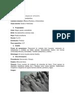 Minerales Del Sist. Rombico (Sistematica)