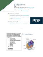 powerpoint print 7-11.pptx