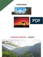 Clase 2 Ecosistemas