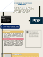 Cuenca Tumilaca 22222