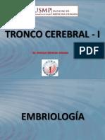 TRONCO_CEREBRAL_I