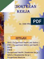 Dr Dini Kedokteran Kerja