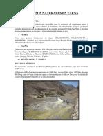Recursos Naturales en Tacna