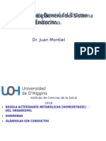 Endocrino (1)