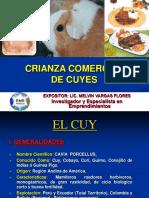 Crianza de Cuyes - Curso