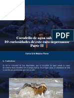 Carlos Erik Malpica Flores - Cocodrilo de Agua Salada, 10 Curiosidades de Este Raro Depredador, Parte II