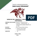 Monografia Dd Ambiental