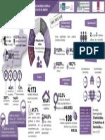 InfograficoDossieMulher2018.pdf