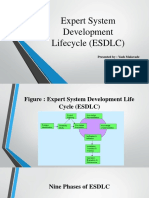 Expert System Development