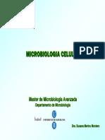 1. Estructuras Implicadas en La Patogenicidad Bacteriana