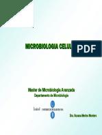 4. Toxinas bacterianas