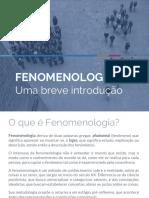 fenomenologia7-170126181037.pdf