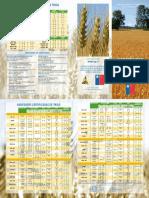 triptico_variedades_certificadas_de_trigo[1].pdf