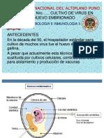 6851738 Virologia Practica 05 Inoculacion de Virus en Huevos Embrionados