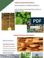 Sistema de Producción Forestal