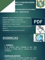 documentos de Auditoria y Evidencias