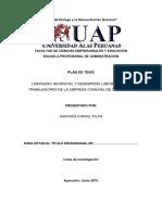 PROYECTO -UAP Pilar Sánchez - JUANITO (1) Antecedentes 12 Ok 10-07-2018