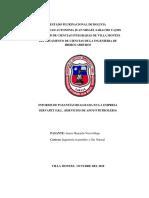 Informe Práctica_servapet Srl Victor Juarez
