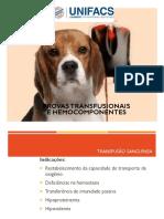 Transfusão Sanguinea