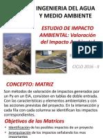 Valoración de impacto ambiental.