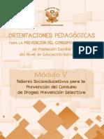 modulo-v.pdf
