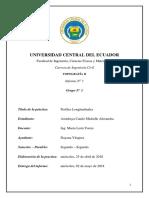 Práctica N °1 -Perfiles Longitudinales.docx