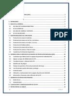 Informe de Proteccion Personal (2)