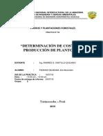 INFORME DE DETERMINACIÓN DE COSTOS DE PRODUCCIÓN DE PLANTONES