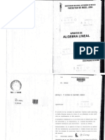 2A  APUNTES DE ALGEBRA LINEAL (1).pdf