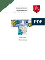 Cuestionario División y crecimiento celular.pdf