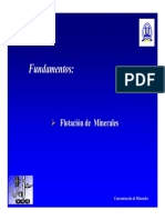 Transparencias_Clases_Fundamentos_Flotaci_n (1).PDF