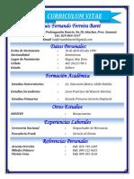 Curriculum Luis Fernando Ferreira Baret