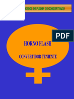 Horno Flash y CT