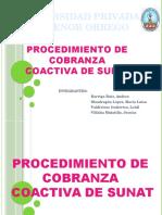 67770843 Procedimiento de Cobranza Coactiva 1 (1)