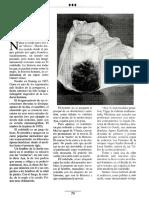 785_rodaballo.pdf