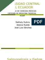 Tifoidea y Salmonelosis Rubira Rueda Sanchez