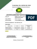Informe Final Corregido