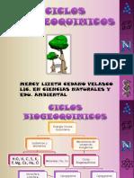 ciclos biogeoquimicos 2