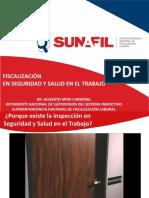 Proceso_fiscalizacion SUNAFIL.pdf