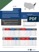 Maine Veteran Suicide Data Sheet, 2016