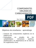 Presentacion 6  Carbohidratos