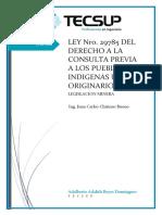 Ley 29785 - Derecho a La Consultar de Los Pueblos Indigenas - Adalberto Reyes Dominguez (Informe)