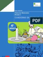 201307241653430.4BASICO-CUADERNO_DE_TRABAJO-CIENCIASNATURALES.pdf