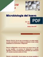 Microbiologia Del Huevo