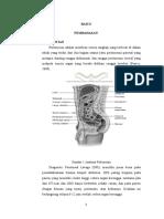 Konsep Diagnostic Peritoneal Lavage