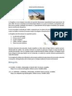 EXCAVADORA DRAGALINA.docx