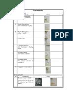 dokumentasi asam salisilat
