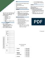 Leaflet Pneumonia PKRS